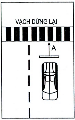 Sát hạch bài 2 : Dừng xe nhường đường cho người đi bộ